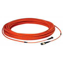 LIGHT LINK 12XOM2 MPO-MPO 25M LSZH