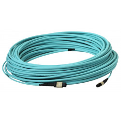 LIGHT LINK 12XOM3 MPO-MPO 25M LSZH